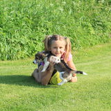 Little girl playing with a puppy. Kneeing little girl playing with brown and white puppy and yellow ball on meadow royalty free stock photo