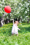 Little girl playing with red balloon in apple garen Royalty Free Stock Image
