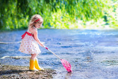 Little girl playing in a river. Child playing in a river. Cute little girl in a summer dress and rain boots catching fish and frog with a colorful net standing Stock Photos