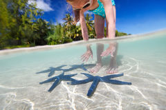Little girl playing with starfish Royalty Free Stock Photos