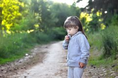 Little girl playing in sunny blooming forest. Toddler child picking flowers. Blowing dandelion. Summer fun for family with childre Royalty Free Stock Photos