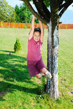 Little  girl is playing on tree Stock Photos