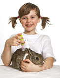 Little girl playing at the vet Stock Photography