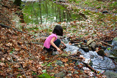 Little girl playing with water in a river. In autumn royalty free stock image