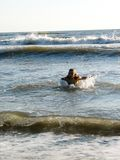 Little girl playing in the waves. At sea on a sunny day Stock Images