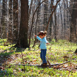 Little girl playing in woods. A view of a little girl playing in a small clearing in the woods on a sunny spring day stock image