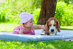 Little girl plays with dog Stock Images