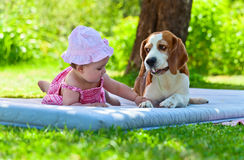 Little girl plays with dog Royalty Free Stock Photography