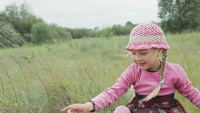 Little girl plays on the field stock video footage