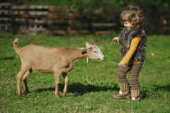 Little girl plays with goat on the farm Stock Photography