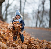 Little girl plays with the leaves. Little girl plays with fallen leaves in Autumn park Royalty Free Stock Photography