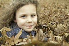 Little Girl Plays in Leaves 3 Stock Photography