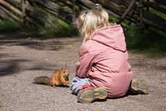 Little girl plays with the squirrel Stock Photos