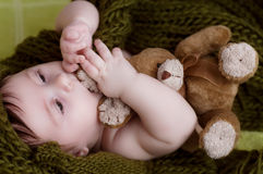 Little girl with plush bunny Royalty Free Stock Photo