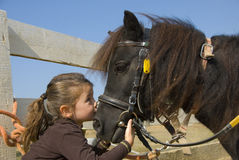 Little girl and pony. Little girl kissing her pony purebred shetland on the nose Royalty Free Stock Images