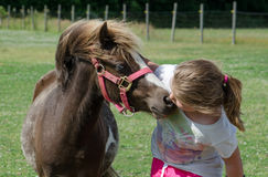 Little girl and pony Stock Photos