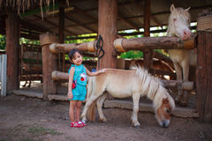 Little girl with pony Stock Photo