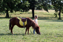 Little girl and pony horse on field Stock Images