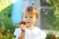 Little girl with ponytail looking at flower Royalty Free Stock Photo