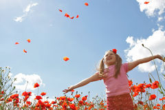 Little girl in poppy field Stock Images