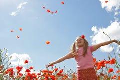 Little girl in poppy field stock images