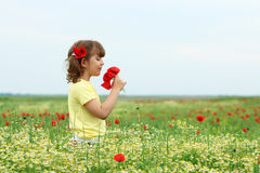 Little girl with poppy flowers on meadow spring season Stock Photos
