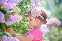 Little girl portrait in a lilac garden Royalty Free Stock Photos