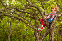 Little girl posing sitting on a tree Royalty Free Stock Image