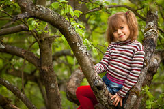 Little girl posing sitting on a tree Stock Photos