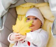Little girl in pram holding autumn leaf Royalty Free Stock Image