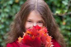 Little girl pre-teen looking out from behind a bouquet of autumn. Leaves. Autumn portrait. Autumn concept Royalty Free Stock Images
