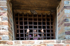 Little girl in prison. Little girl under prison bars with a scared face Royalty Free Stock Photos