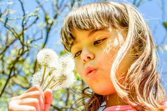 Little girl profile while blowing dandelion in her hand. Beautiful Little girl profile while blowing dandelion in her hand stock photo