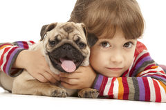 Little girl and the Pug-dog. Isolated on a white background Stock Image
