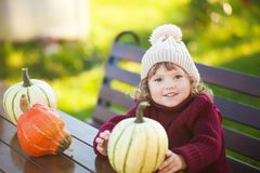 Little girl with pumpkin harvest, Thanksgiving. Cute toddler girl wearing sweater and kitted hat, smiling, outdoors. Pumpkin harvest, Thanksgiving Stock Photos