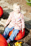 Little girl with pumpkins. Little girl sitting on pumpkin Royalty Free Stock Images