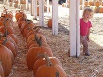Little girl pumpkins Royalty Free Stock Image
