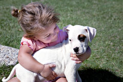 Little girl with puppy stock photography