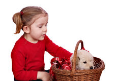Little girl and puppy Stock Photos