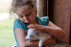 Little girl and puppy Stock Image