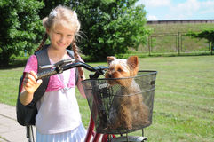 Little girl, puppy and bike Royalty Free Stock Images