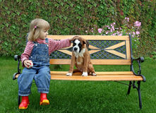 The little girl with a puppy of the boxer. The little girl sits on a bench with the puppy of the boxer Stock Photo