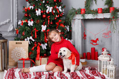 A little girl with a puppy Golden Retriever on a background of Christmas tree Royalty Free Stock Photos