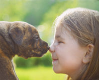 Little girl with a puppy Stock Images