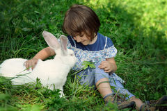 Little girl with rabbit. Cheerful little girl with white rabbit royalty free stock images