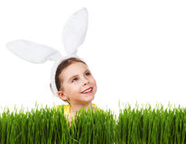 Little girl in a rabbit costume. Peeking out of the grass and looking up on a white background Stock Photos