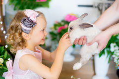 Little girl with a rabbit Stock Photo