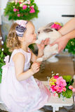 Little girl with a rabbit Royalty Free Stock Images