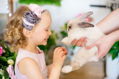Little girl with a rabbit Royalty Free Stock Photo