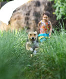 Little girl Racing the Dog at the countryside Stock Images